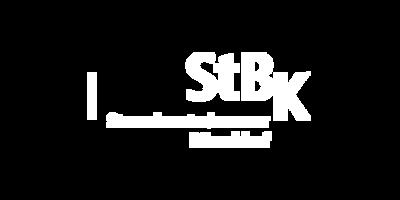 4-steuerberater-kammer-logo